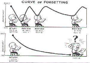 viñeta curva del olvido