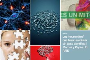 Neurodidactica neuromitos neurodidactic